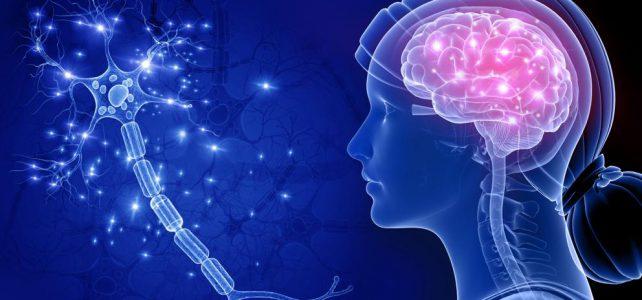 ¿Hasta cuándo puede conducir una persona con Alzheimer?